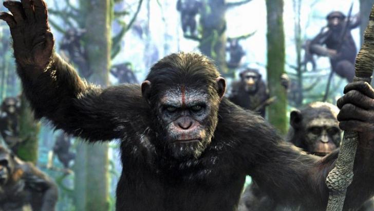 Il pianeta  delle scimmie - Evolution Collection + Apes Revolution (8 Dvd)