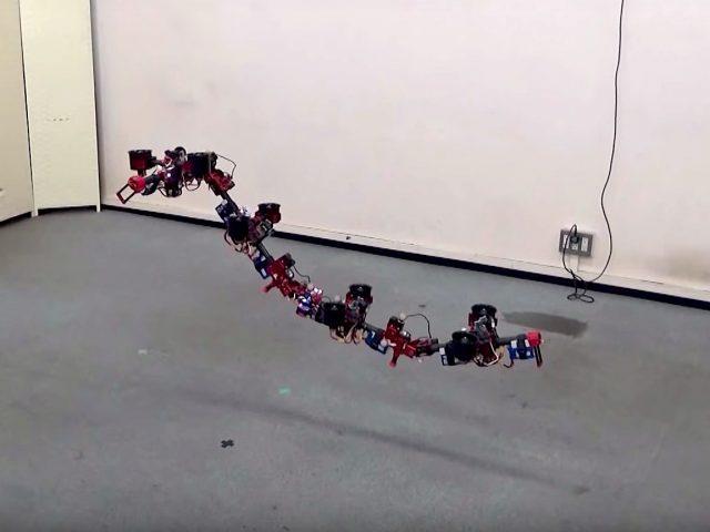 drone mutante dragon