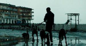 dogman Matteo Garrone Oscar