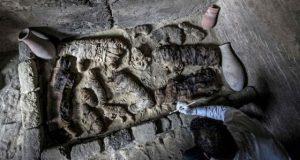 Egitto mummie gatti